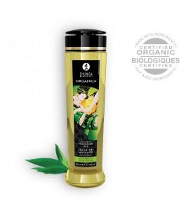 SHUNGA MASSAGE OIL ORGANICA GREEN TEA 240ML